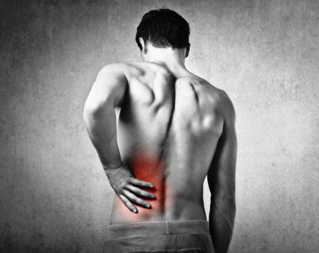 Why Spinal Disc or Degenerative Disc Disease Give Pain Symptoms ?